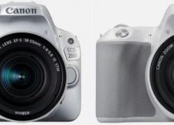Canon Eos Rebel SL2: Reseña de la super compacta reflex canon