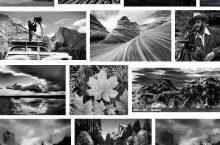 Ansel Adams: emociones en blanco y negro